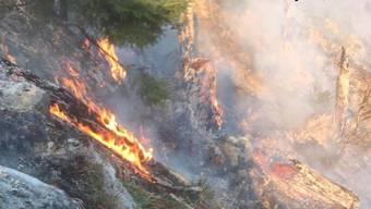 Die Feuerwehr brachte den Waldbrand in Amden SG bis um Mitternacht unter Kontrolle. (St. Galler Kantonspolizei)