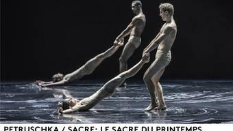 Der Choreograf Edward Clug setzt für seine Version von «Le Sacre du printemps» die Bühne unter Wasser. Gregory Batardon