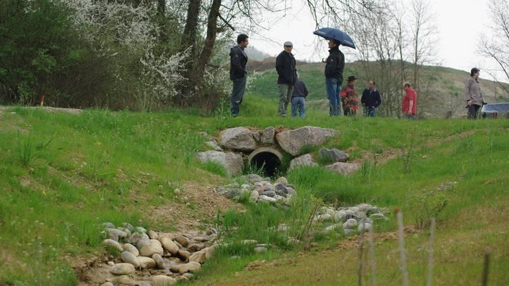 Wo der Sännerlocherbach früher in einer unterirdischen Röhre verlief, liegt er jetzt in einem offenen Bachbett