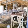Die Schweiz zählt immer weniger Landwirtschaftsbetriebe – übrig bleiben immer grössere Bauernhöfe und mehr Bio-Betriebe. (Symbolbild)