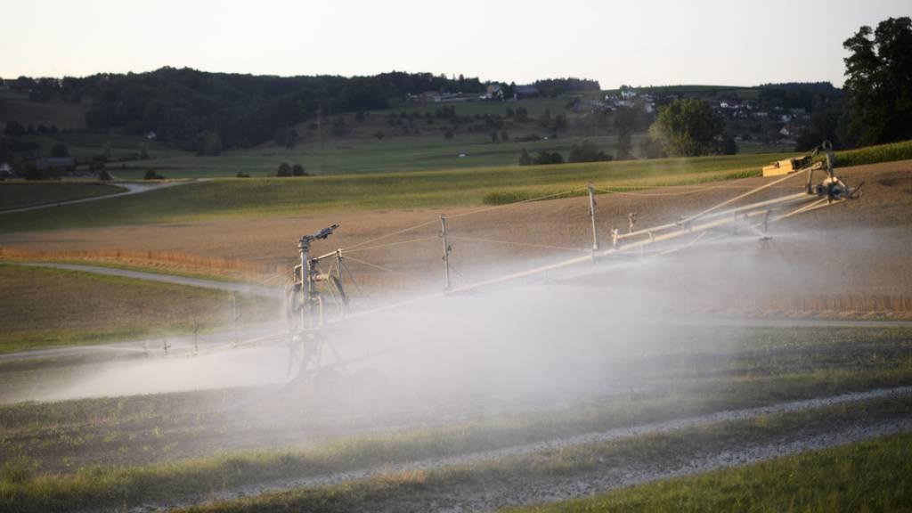 Künstliche Bewässerung mildert Hitzeextreme