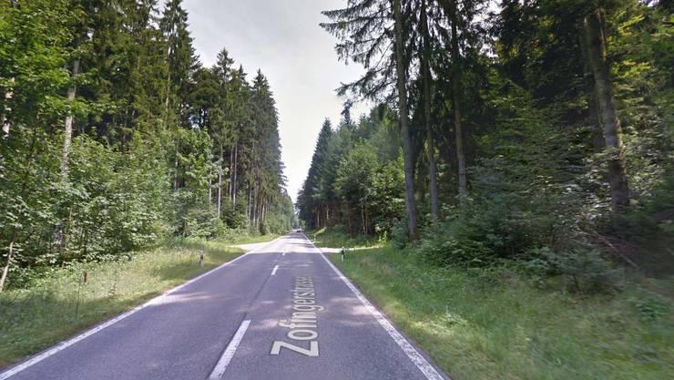 Die Strecke im Boowald.