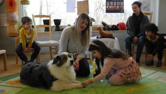 In speziellen Fällen dürfen künftig Sozialhunde in die Schulen von Aesch. (Symbolbild)