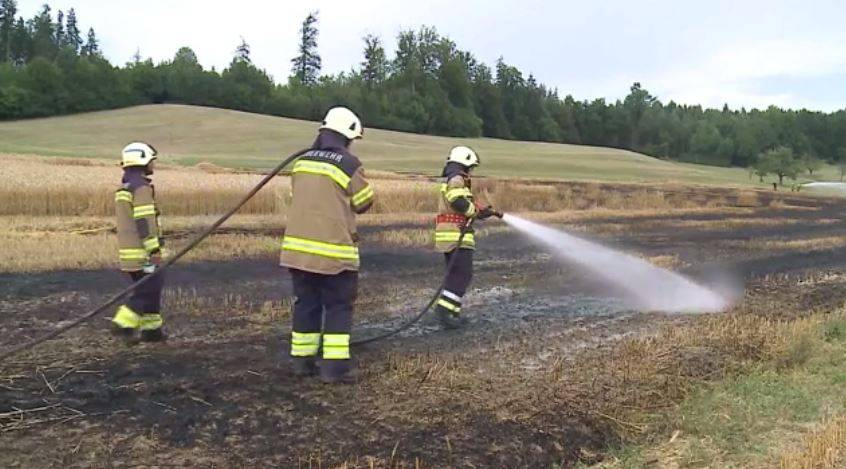 Weizenfeld in Niedergösgen abgebrannt