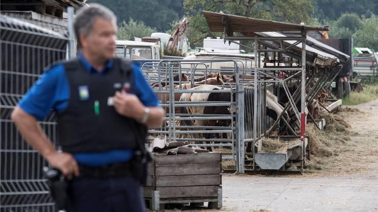 Im August wurden die Tiere aus Hefenhofen abtransportiert.