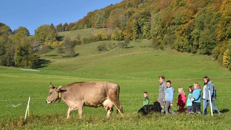 Gemeinsam mit Susann Winkler und dem Berghofhund treiben die Kinder die Kühe auf die Weide.