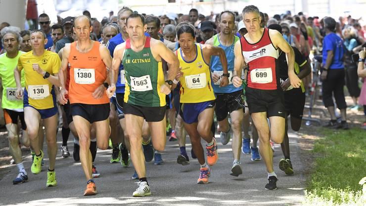 Start der Hauptkategorie am AZ Goldlauf: Der 53. Pfingstlauf in Wohlen findet 2019 bei strahlendem Sonnenschein statt.