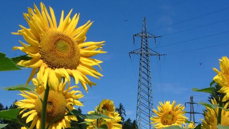 Mit zahlreichen Vorstössen zielt der Landrat in eine grüne Energiezukunft. Von so manchem an die Regierung überwiesenen Vorstoss war seither nichts mehr zu hören.