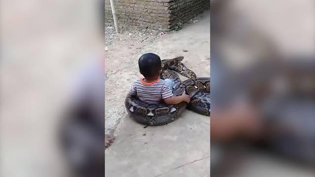Schockmoment: Kleinkind spielt mit Würgeschlange