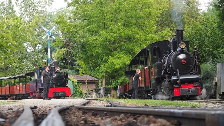 Neben den hübschen Modelleisenbahnen drehten auf dem Areal des Gartencenters Zulauf auch die lebensechten Züge der Schinznacher Baumschulbahn ihre Runden.