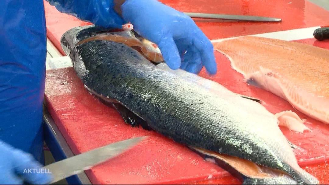 Fischhändler im Karfreitags-Stress