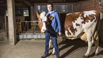 Matthias Haller mit seiner neunjährigen Kuh Arosa im Stall
