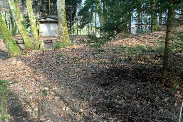 """Hier im Wald von Neuenhof lag der Leichnam von Marco K., auch er war Mitinhaber des Saunaclubs """"Saturn"""". (Archivbild von 2007)"""