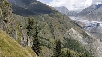 Der Vater und die drei Söhne verirrten sich auf der Strecke zwischen Belalp VS und dem Aletschgletscher (Archiv)
