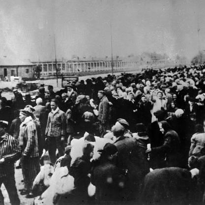 Eine Zugladung von Opfern, deren Endstation Auschwitz sein wird.