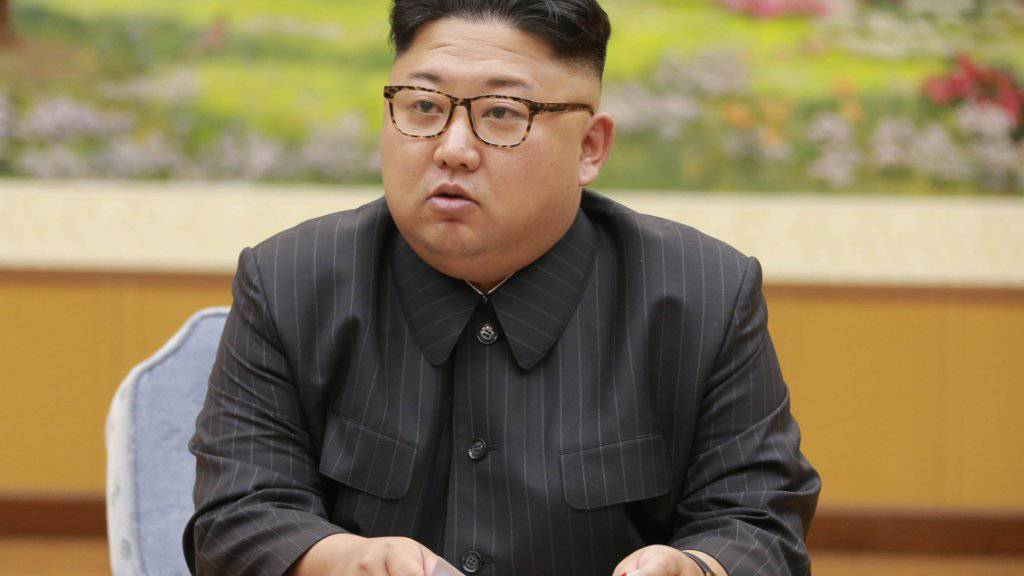 Nordkoreas Machthaber Kim Jong Un sucht mittels eines Briefes die Unterstützung von ausländischen Parlamenten. (Archivbild)