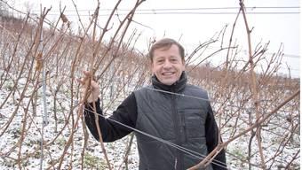 Antoine Kaufmann ist der neue Besitzer der Domaine Nussbaumer.