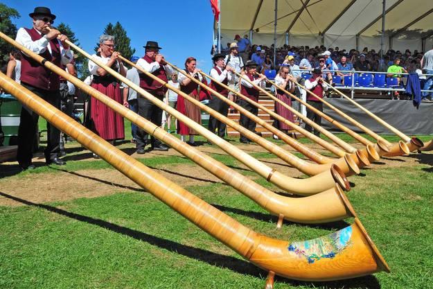 Alphornbläserinnen und -bläser sorgen am Schwingfest für Unterhaltung.