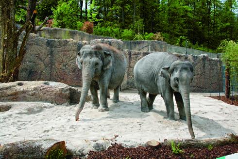 Die Eltern: Mutter Farha und Ceyla-Himali (links).