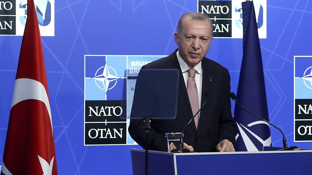 Der Präsident der Türkei Recep Tayyip Erdogan spricht auf einer Pressekonferenz während des Nato-Gipfels.