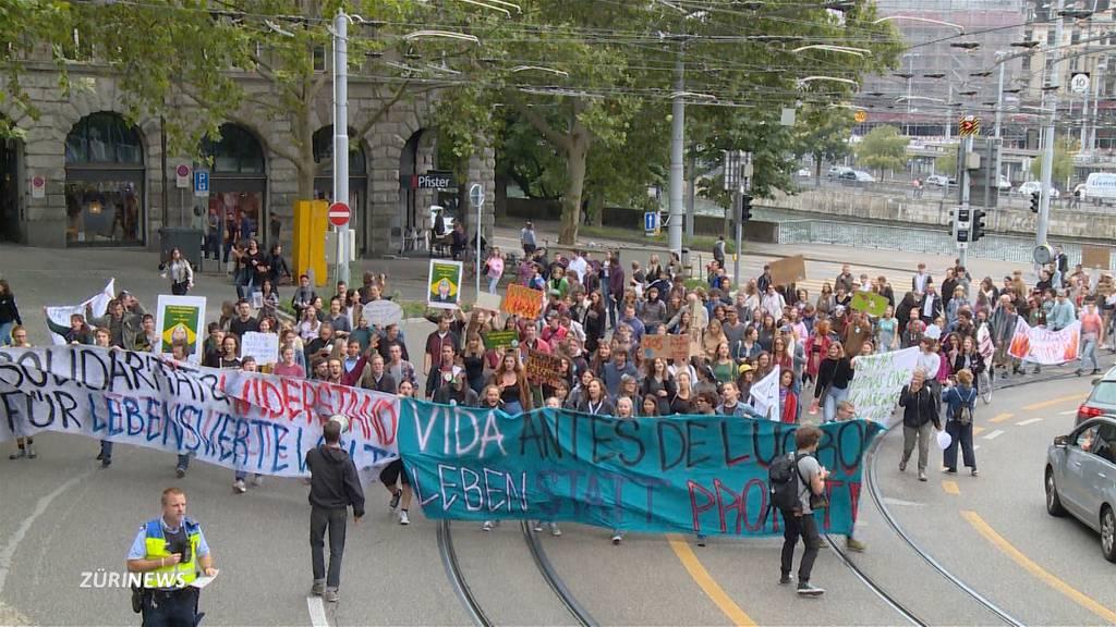 Zürich: Für den Amazonas auf die Strasse