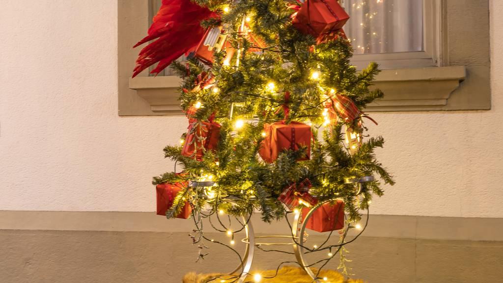 Christbaum-Aktion 2019: Der Baum von Fabilu