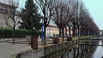 Dieses Foto veröffentlichte Angela M. auf Facebook. Es zeigt die norditalienische Kleinstadt Romano di Lombardia.