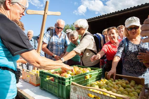 Sommerliche Verpflegung auf dem Hof der Familie Gafner ob Moutier: Pflaumen und Äpfel frisch vom Baum, die es dank des Hitzesommers reichlich gibt dieses Jahr.