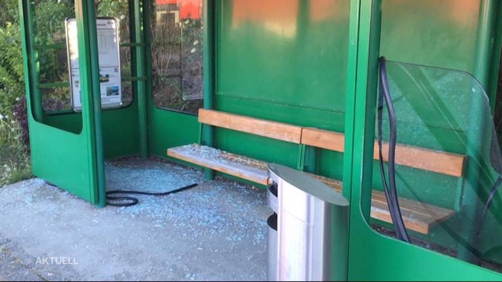 Vandalen von Hägendorf dank Kopfgeld geschnappt