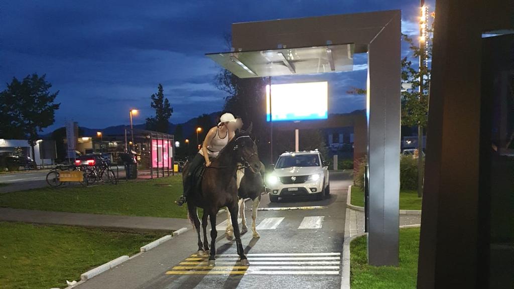 Kommen zwei Pferde in den «McRide»