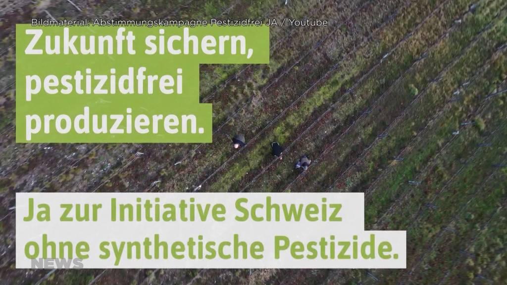 Pestizid-Initiative Ja oder Nein? Bauernverbände sind sich uneinig