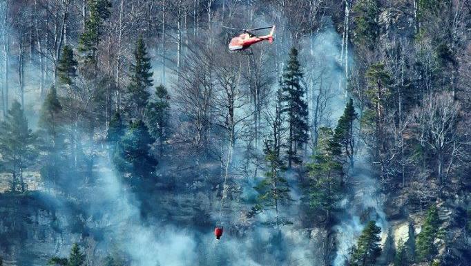 Verwehte Glut aus einer Feuerstelle löste am Sonntag, dem 8. April, oberhalb von Günsberg einen Waldbrand aus.