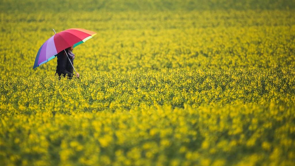 Der Regenschirm hat (noch) keine Ferien