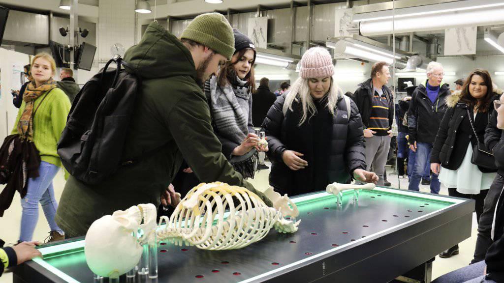 Besucher während der Basler Museumsnacht im Anatomischen Museum.