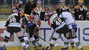 Der EHC Basel darf sich gegen den Tabellenletzten Belp beweisen.
