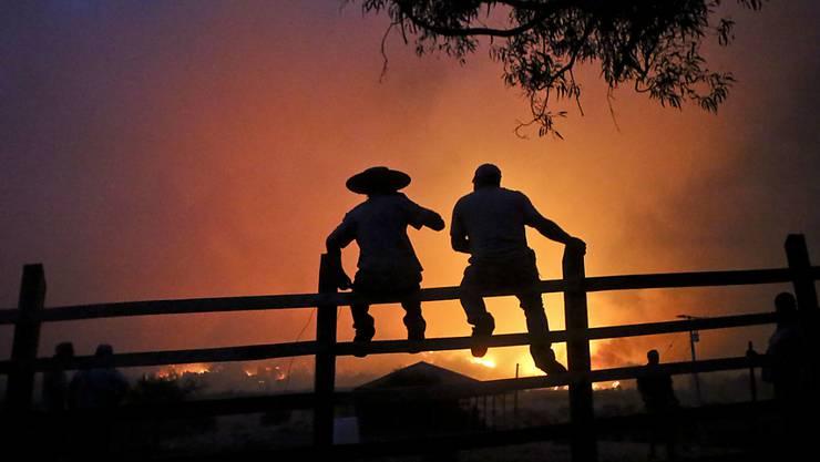 Zaungäste vor dem Schein der Brände im chilenischen Portezuelo