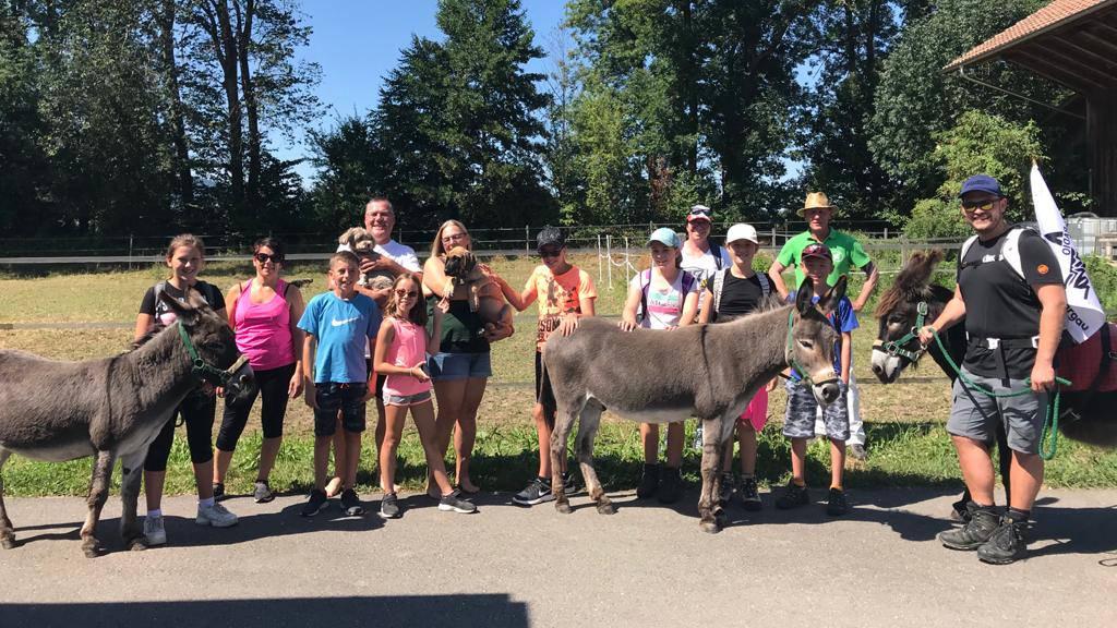 Zwei Esel im Aargau – So wanderten Speedy und Bisang mit euch durchs Argovialand