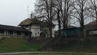 Besetztes Schüztenhaus am Allschwiler Weiher.