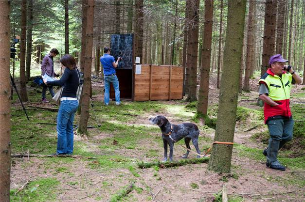Die Pantherfalle steht an einem Ort, der ruhig, nur schwach frequentiert, aber gut erreichbar ist. Die Falle ist aus Holz, rund drei Meter lang, 1,2 Meter breit und 1,3 Meter hoch. Ein Köder im Innern soll den Panther anlocken.