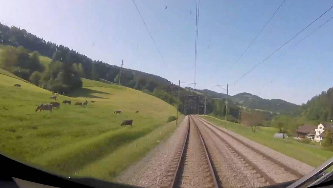 Jetzt erst recht: Kommen Sie mir auf eine Führerstandsfahrt von St.Gallen an den Vierwaldstättersee