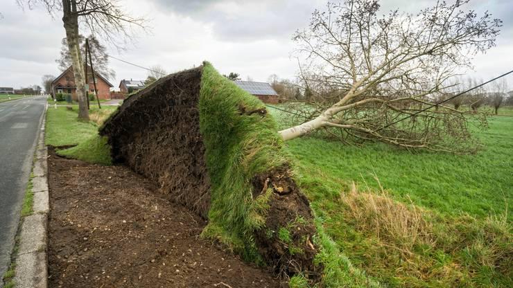 Mit schweren Böen und heftigem Regen ist das Sturmtief Nordrhein-Westfalen angekommen.