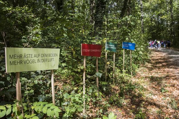 Der Wald wird zum Museum mit Denkanstösse
