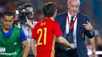 David Silva erhält von Coach Vicente Del Bosque letzte Anweisungen