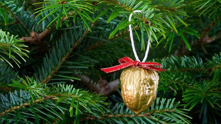 Auch Nüsse können kreativ zu simplem Baumschmuck werden.