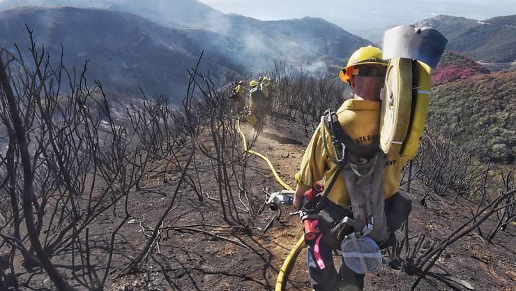 Noch immer sind in Kalifornien 665 Feuerwehrleute im Einsatz gegen den grössten Waldbrand in der Geschichte des US-Bundesstaats