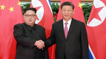 Als erster chinesischer Präsident seit 14 Jahren besucht Xi Jinping (r.) derzeit Nordkorea und ist mit dessen Machthaber Kim Jong Un (l.) zu Gesprächen zusammengekommen.
