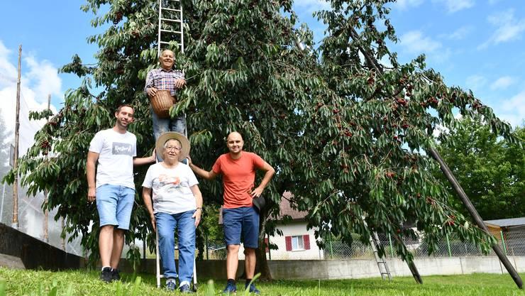 Kurt Frey steht auf der Leiter. Unten stehen (v. l.): sein Enkel Yannick Frey, seine Partnerin Dora Amsler und sein Enkel Nicolas Reinhart.