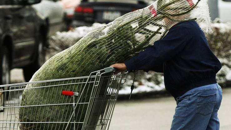 Fast 50 Prozent aller Schweizer kaufen ausländische Tannenbäume.
