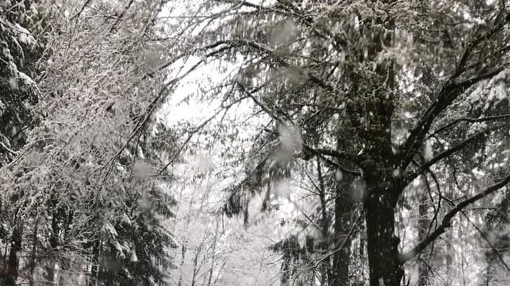 Überall liegt Schnee. Hier ein Bild aus Gränichen.