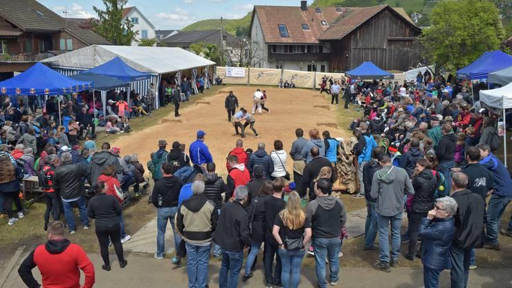 Die Wahl der kleinen Gemeindematte bei der alten Schreinerei in Endingen war ein Volltreffer: Viele Zuschauer drängten sich um die Sägemehlfläche.